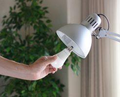LEDの税金の処理方法について