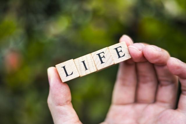 節税前に知っておきたい生命保険の基本について!
